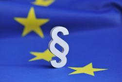 Przedstawiciel podmiotu zagranicznego w UE